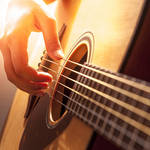 Guitarist & Musicians