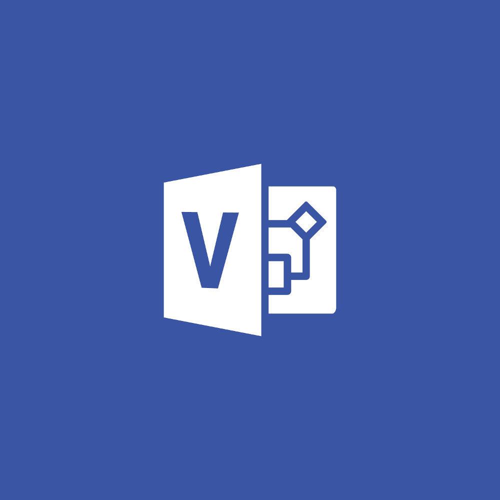 Microsoft Visio Professional 2019 (1-User License, Download)