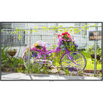 """NEC C501 50""""-Class Full HD Commercial LED Display"""
