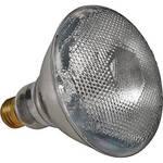 NSI / Leviton 150 Watt Flood Lamp for Par 38