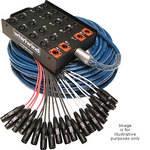 Whirlwind Medusa Standard 20 Channel (0x  Return) Snake - 150'