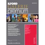 ILFord 17x22 Gold Fibre Silk paper