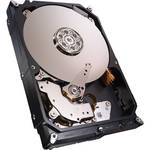 Seagate ST3000VN000 3TB Internal NAS Drive