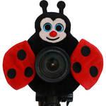 Camera Creatures Lovable Ladybug Posing Prop
