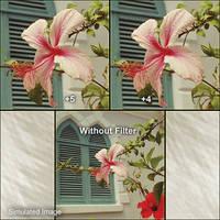 B+W 77mm Close-up +5 Lens (NL5)
