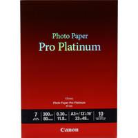 Canon Pro 13 x 19
