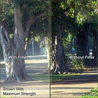 """Schneider 4x5.65"""" Digicon 1 Glass Filter"""