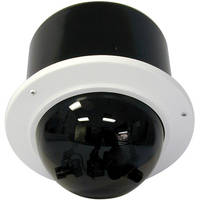 Videolarm QIRMT450NA QView Vandal-Resistant Indoor Dome (Tinted)