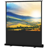 """Da-Lite 33033  Deluxe Insta-Theater Portable Tripod Projection Screen (48x64"""")"""