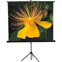 "Mustang SC-T7011 Tripod Front Projection Screen (70x70"")"