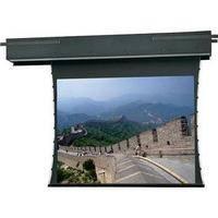 Da-Lite 34050E Executive Electrol Motorized Projection Screen (12 x 12')
