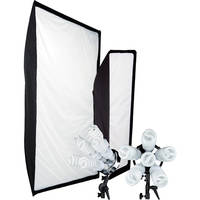 Westcott 2-Pack Spiderlite TD6 Show PROMO Kit (110V AC)