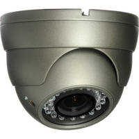 Honeywell/Sperian HD31 Super High Resolution Day/Night Indoor/Outdoor IR Ball Camera (Dark Gray)