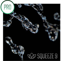 Sorenson Media Squeeze 9 Pro Upgrade From Squeeze 8 or 8.5 (Activation Disc)
