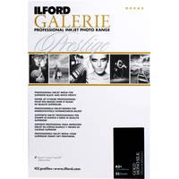 Ilford GALERIE Prestige Gold Mono Silk Paper (13 x 19