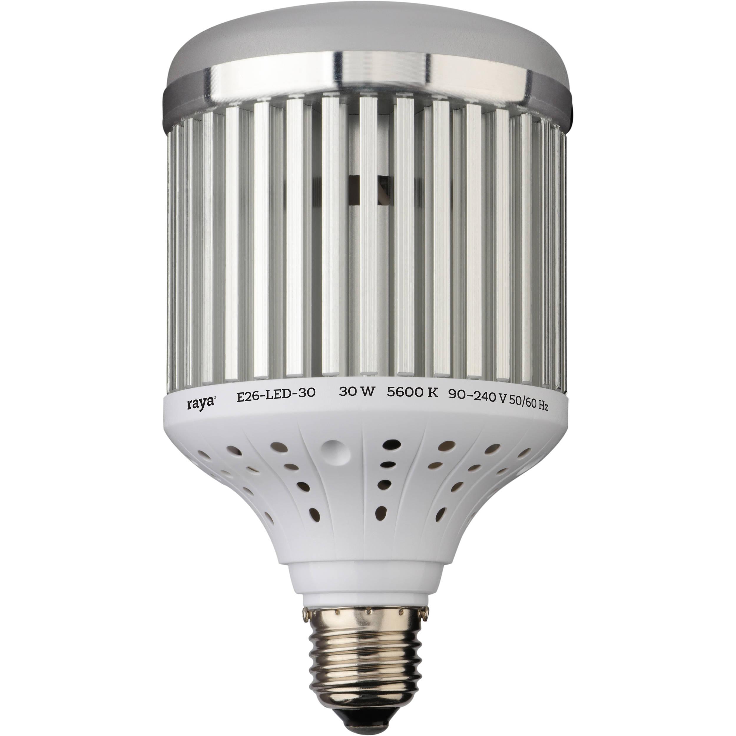 Raya Led Light Bulb 30w E26 30 B