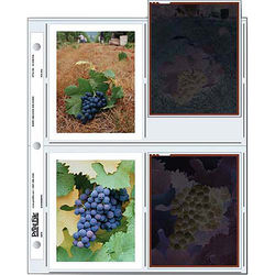 """Print File Archival Storage Page for Polaroid Prints, 4x5"""", Holds 8 Prints - 100 Pack"""