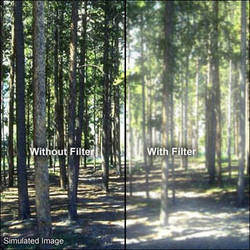 B+W 60mm Soft Image (655) Filter