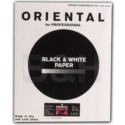 Oriental Seagull-RC 8x10/20 #4 Glossy