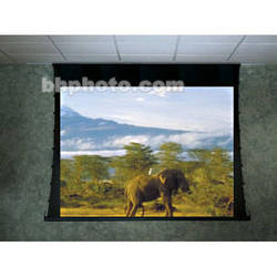 Draper 118188 Ultimate Access/Series V Motorized Front Projection Screen (10 x 10')