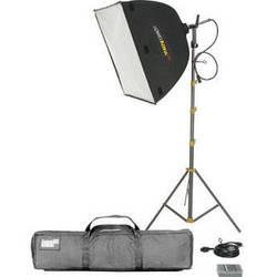 Lowel Rifa eX 66 Kit, LB-40 Soft Case
