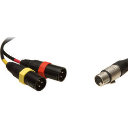 Remote Audio 5-Pin Stereo XLR Female to Dual XLR Male Y-Cable - 18""