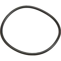Ikelite O-Ring for DS-125 Battery Door