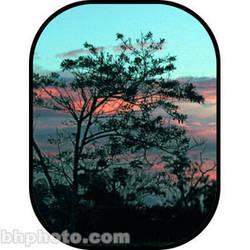 Botero #C705 5x7' Scenic Background