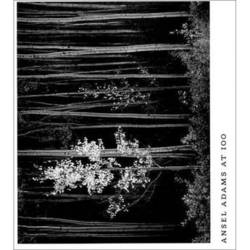 Little Brown Book: Ansel Adams at 100 (Hardcover)
