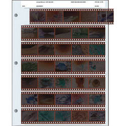 Pana-Vue 35mm Negative Pages (7 Strip/5 Frame, 25 Pages)