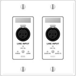 Rane RAD 3 2 Gang Wall Plate with 2 Line Inputs (White)