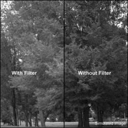 Formatt Hitech Deep Green 61 Filter (62mm)