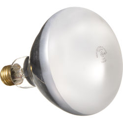 General Electric R40 Reflector Flood Lamp - 300 Watts/120 Volts