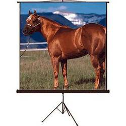 "Mustang SC-T100D43 Tripod Front Projection Screen (60x80"")"