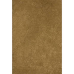 Backdrop Alley BATD12DSTGLD Crush Muslin Background (10 x 12', Dusty Gold Crush)