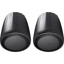 JBL Control 65P/T Full-Range Satellite Pendant Speaker (Black, Pair)