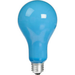 Eiko EBW Lamp (500W/120V)