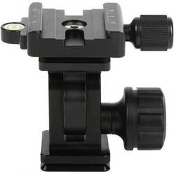 Sunwayfoto DT-01D50 Tilt Head with Clamp