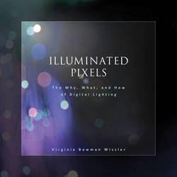 Cengage Course Tech. Book: Illuminated Pixels: The Why, What, and How of Digital Lighting - 1st Edition