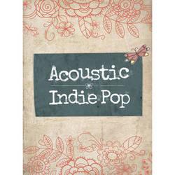 Big Fish Audio Acoustic Indie Pop DVD