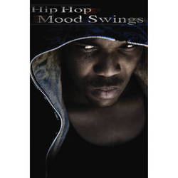Big Fish Audio Hip Hop Mood Swings DVD (Apple Loops, REX, WAV, & RMX Format)