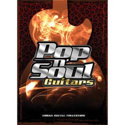 Big Fish Audio Pop n' Soul Guitars DVD (Apple Loops, REX, WAV, RMX, & Acid Format)