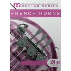 Big Fish Audio French Horns Modular Series DVD (Gigastudio 3)