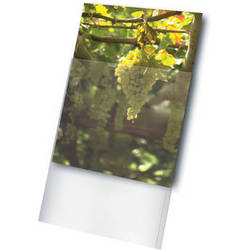 Print File Archival Storage 120 Standard Photo Sleeve