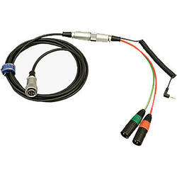 Ambient Recording Straight Mixer/Camera Loom Hirose 10-Pin (13.1') with HBY10-35W Breakout Cable
