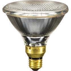 General Electric Quartzline PAR 38 Medium Flood Lamp (250W/120V)