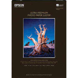 "Epson Ultra Premium Luster Photo Paper (A3, 11.7 x 16.5"", 50 Sheets)"