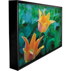 "Peerless-AV Xteme CL-55PLC68-OB 55"" Full HD Landscape Outdoor LCD TV (Black)"