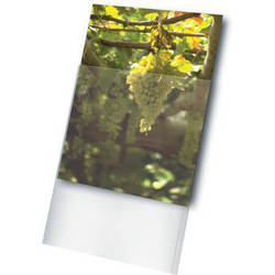 """Print File Archival Storage Standard Photo Sleeve for 11 x 17"""" Print (100-Pack)"""