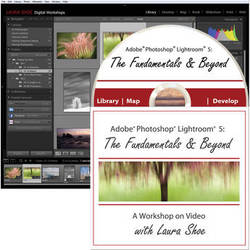 Laura Shoe DVD: Adobe Photoshop Lightroom 5: The Fundamentals & Beyond